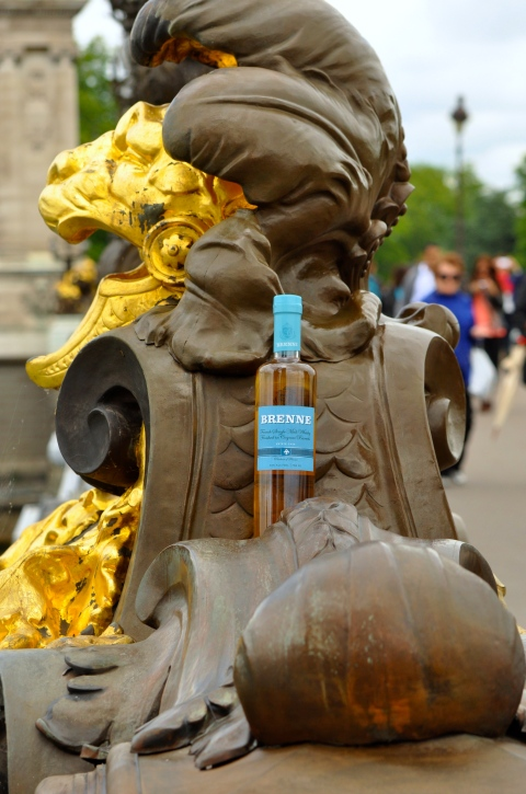 Brenne hanging out at Pont Alexandre in Paris, France #BrenneVoyage